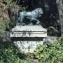 Lions [à la boule](2) - Cerro Santa Lucia - Santiago de Chile - Image6