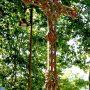 Croix et entourages de tombes - Cimetière - Bioule - Image22