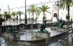 Chiens – Perros (8) – Vegueta – Las Palmas de Gran Canaria