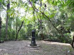 Fontaine Wallace du Parc National de Tijuca – Fonte Wallace do Parque Nacional da Tijuca – Rio de Janeiro