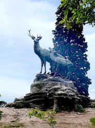 Les cerfs au repos – Parque 3 de Febrero – Buenos aires