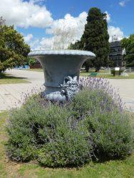Vases à tête de faune (2) – Plaza Moreno – La Plata