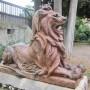 Lion - Alet-les-Bains - Image2
