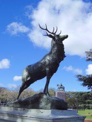 Ciervo – Cerf de Le Duc – Plaza Intendente Seeber – Buenos aires