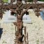 Fonte funéraire – Cimetière – Saint-Victor-l'Abbaye