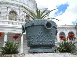 Cache-pots (4) – Municipalidad – La Plata