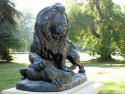 Lion terrassant un crocodile – Collection privée – Santiago de Chile