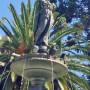 Fuente - Fontaine - Plaza Belgrano - San Salvador de Jujuy - Image2
