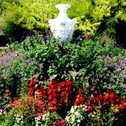 Grand Vase – Jardin des plantes – Le Mans