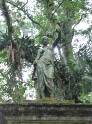 L'Indienne Parc National de Tijuca – A índia do Parque Nacional da Tijuca – Rio de Janeiro
