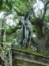 L'Indien – Parc National de Tijuca – O indio do Parque Nacional da Tijuca – Rio de Janeiro