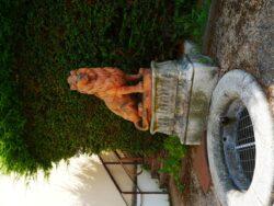 Fontaine du lion – La-Chapelle-Montligeon
