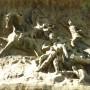 Monument aux morts de 1870, ou Monuments aux enfants de la Gironde? ou Monument aux mobiles de la Gironde - Bordeaux - Image2