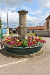Fontaine 1/2 – Ortoncourt