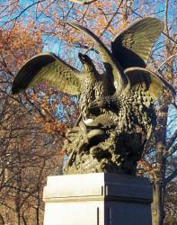 Aigles et proie – Central Park – New York