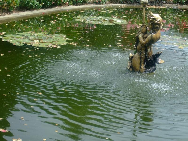 Fontaine de la roseraie jardin lecoq clermont ferrand - Massif jardin japonais clermont ferrand ...