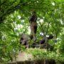 Monument Gustave Haller, Consuelo Fould - Cimetière du Père Lachaise - Paris (75020) - Image11
