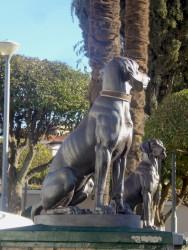 Chiens assis (2) – Perros – Iglesia San Roque – Sucre