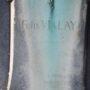 Médaillon de Félix Vialay - Cimetière de Montparnasse - Paris (75014) - Image3