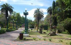 Cerf – Jardin zoologique – La Plata