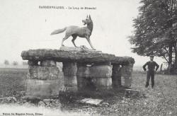Loup de Métendal – Rambervillers