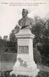 Monument au professeur Monprofit – Angers (fondu) (remplacé)