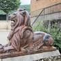 Lion - Alet-les-Bains - Image3