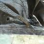 Monument au général Delzons - Aurillac - Image13