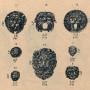 DENO_1894_PL291 - Mascarons et têtes diverses - Image1
