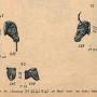 DENO_1894_PL291 - Mascarons et têtes diverses - Image3
