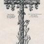 DOM_AG_1928_PL57 - Croix ronde bosse creuses - Image3