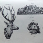 DUC_VO_PL148_F403 - Groupes et têtes d'animaux - Image1