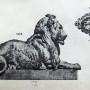 DUC_VO_PL148_F403 - Groupes et têtes d'animaux - Image6
