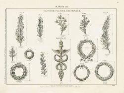 DUR_FU6_F19_PL615 – Caducée, palmes, couronnes