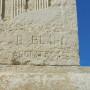 Taureau - Nîmes - Image6