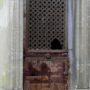 Portes de chapelles sépulcrales - Division 17 - Cimetière du Père Lachaise - Paris (75020) - Image23