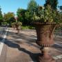 Vases (quatre) - Rue de la Poste - Paray-le-Monial - Image1