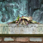 Monument aux morts 1914-1918 - Allées du Ravelin - Sorèze - Image9