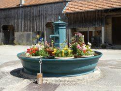 Borne-fontaine – Rue de la Mairie – Cuvier