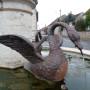 Fontaine aux cygnes - Place des Cygnes - Thervay - Image3