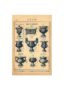 SAL_V1900_PL767 - Vases et corbeille - Image4