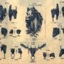 SAL_V1900_PL774 - Mascarons et têtes diverses - Image2