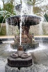 Bassins (2) – fontaine et grenouilles – Parc du Château – Vaux-le-Vicomte