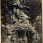Aigle et vautour se disputant un ours - Paris (75009) (fondu) - Image1
